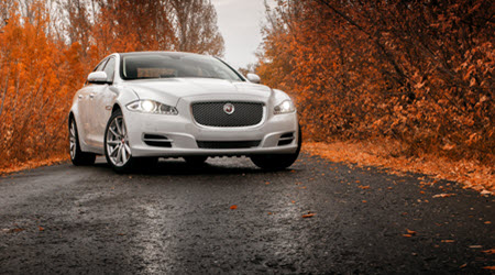 Jaguar XJ on Wet Road